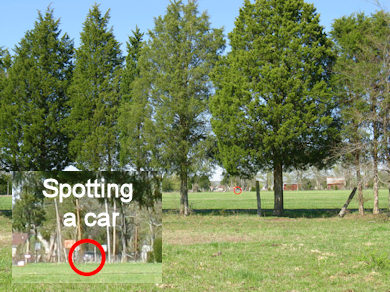Spotting a car