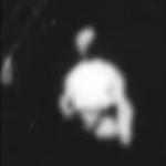 Monkeyshines No. 1. Dickson, Heise, Edison. Kinetoscope film.